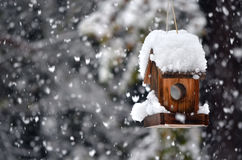 Bird house in winter. A snow covered bird house in winter with snowflakes falling down stock images