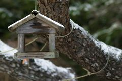 Bird house in winter. Covered with snow Royalty Free Stock Images