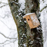 Bird house in the winter, hanging on the tree. Color photography of bird house in winter Royalty Free Stock Photo