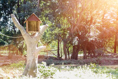 Bird house from wood on tree with lens flare light Stock Photo