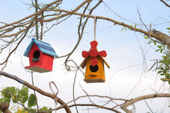 Bird house. Wooden bird house of full color on the tree royalty free stock image