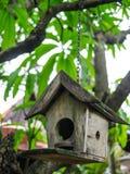 Bird house. Wooden bird house in the garden royalty free stock photography