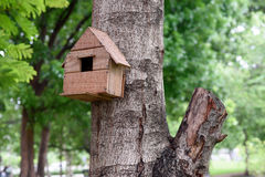 Bird House. Wooden bird house by humans stock images