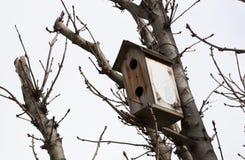Bird house. Wooden bird house in a tree stock photos