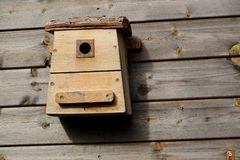 A bird house on a wooden wall. A small bird house on a wooden wall stock photo