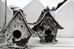 Bird Houses Stock Photo