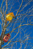 Bird Houses in the old tree with blue sky Royalty Free Stock Photography