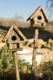 Bird Houses in Sunshine. Two wooden bird houses in sunshine, one in focus, one out Royalty Free Stock Photography