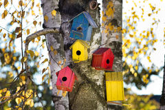 Bird houses on the tree Royalty Free Stock Photography