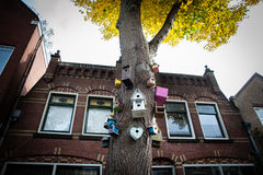 Bird houses on a tree Stock Images