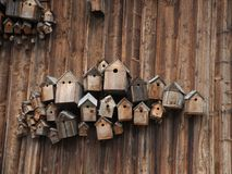 Bird houses on a wooden wall. A collection of decorative bird houses on a wooden wall Stock Photo