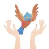 Bird   from human hand Stock Image