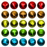 Bird icons. Set of twenty five icons for various bird species Stock Images