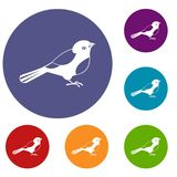 Bird icons set. In flat circle reb, blue and green color for web royalty free illustration
