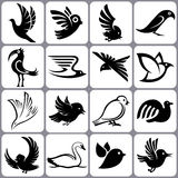 Bird Icons Set. 16 Bird Icons Set Illutration Royalty Free Illustration
