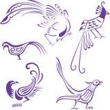 Bird illustration Stock Photo