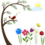 Bird In A Tree Stock Image