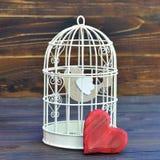 Bird inside bird cage. Little bird inside bird cage Royalty Free Stock Photography