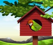 A bird Stock Images