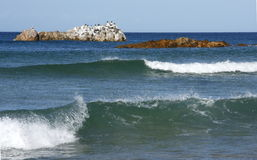 Bird island and waves Royalty Free Stock Photography