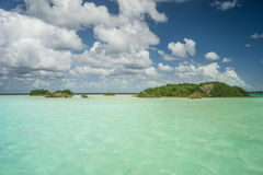 Bird Islands. Bird reservation in bacalar, mexico Stock Photos