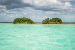Bird Islands 2. Bird reservation in bacalar, mexico Royalty Free Stock Photography