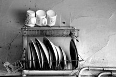 Bird in kitchen. Bird in old kitchen- cups, plates and old pipes Royalty Free Stock Photo