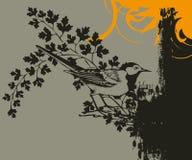Bird on leafy branch Stock Photo