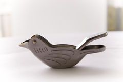 Bird Lemon Squeezer Stock Photo