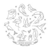 Bird line icons with outline style  Stock Photography