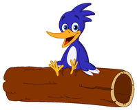 Bird on log. Cheerful bird sitting on a log Stock Photo