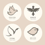 Bird logo template set. Abstract Icon. Business concept. Use for Royalty Free Stock Image