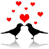 Bird love Stock Photo