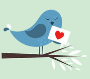 Bird love. Blue bird with love letter. vector illustration Stock Images
