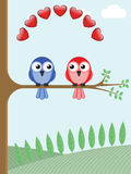 Bird lovers. Two bird lovers sat on a tree branch Stock Photo