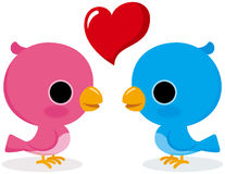Bird lovers. Cute bird lovers have a love talk Stock Images