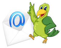 Bird with mail envelop Stock Image