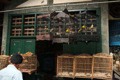Bird Market in Yogyakarta, Central Java, Indonesia. Stock Image