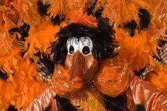 Bird mask Royalty Free Stock Images