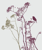 Bird on meadow flowers. Vector image of the silhouettes of the wildflowers and bird Royalty Free Stock Photo