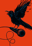 Bird with a microphone. Raven is holding a microphone. Rock illustration for posters royalty free illustration
