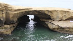 The bird and Natural arch. Sunset Cliffs Natural Park, San Diego, California stock footage