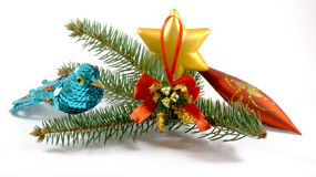 Bird  near spruce branch with christmas tree toys. White background with shadows Stock Photos