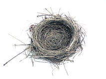Bird nest. Photo of a bird nest isolated over white background royalty free stock photos