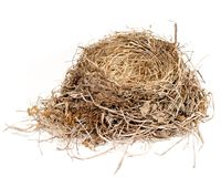 Bird nest. Made of grass and straw royalty free stock image