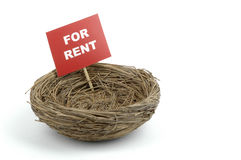 Bird Nest. With a for rent sign Stock Photography