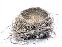 Bird nest 2. Photo of a bird nest isolated over white background royalty free stock photos