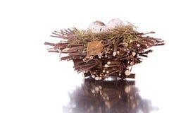 Bird nest Stock Photography