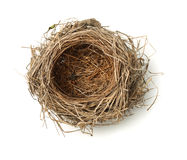 Free Bird Nest Stock Photography - 65095502