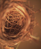 Bird Nest. A shot of a bird nest from top angle royalty free stock photography